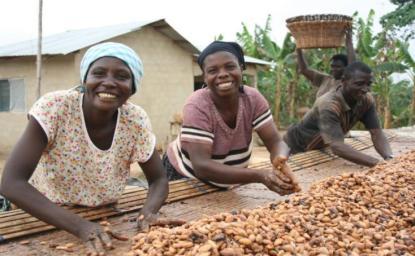 Het drogen van divine bonen - cacao uit Ghana. Foto, Cerro Azul Food, www.centrummondiaal.nl