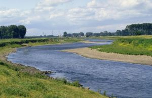 Grensmaas, Maas, Midden-Limburg , Limburg, Nederland, Europa