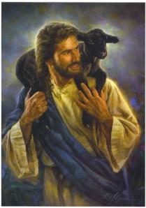 Een goede herder gaat op zoek naar ieder schaap.