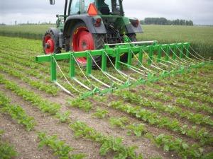 Bij een rentmeester landbouw past mechanische onkruidbeheersing beter dan chemische bestrijdingsmiddelen.