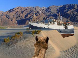 schip in zand