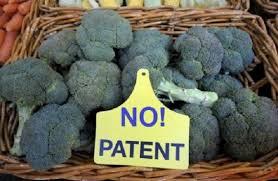 no patent