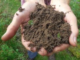 Handen grond uitsnede