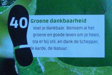 Groene stap 40