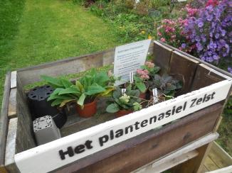 plantenasiel 2